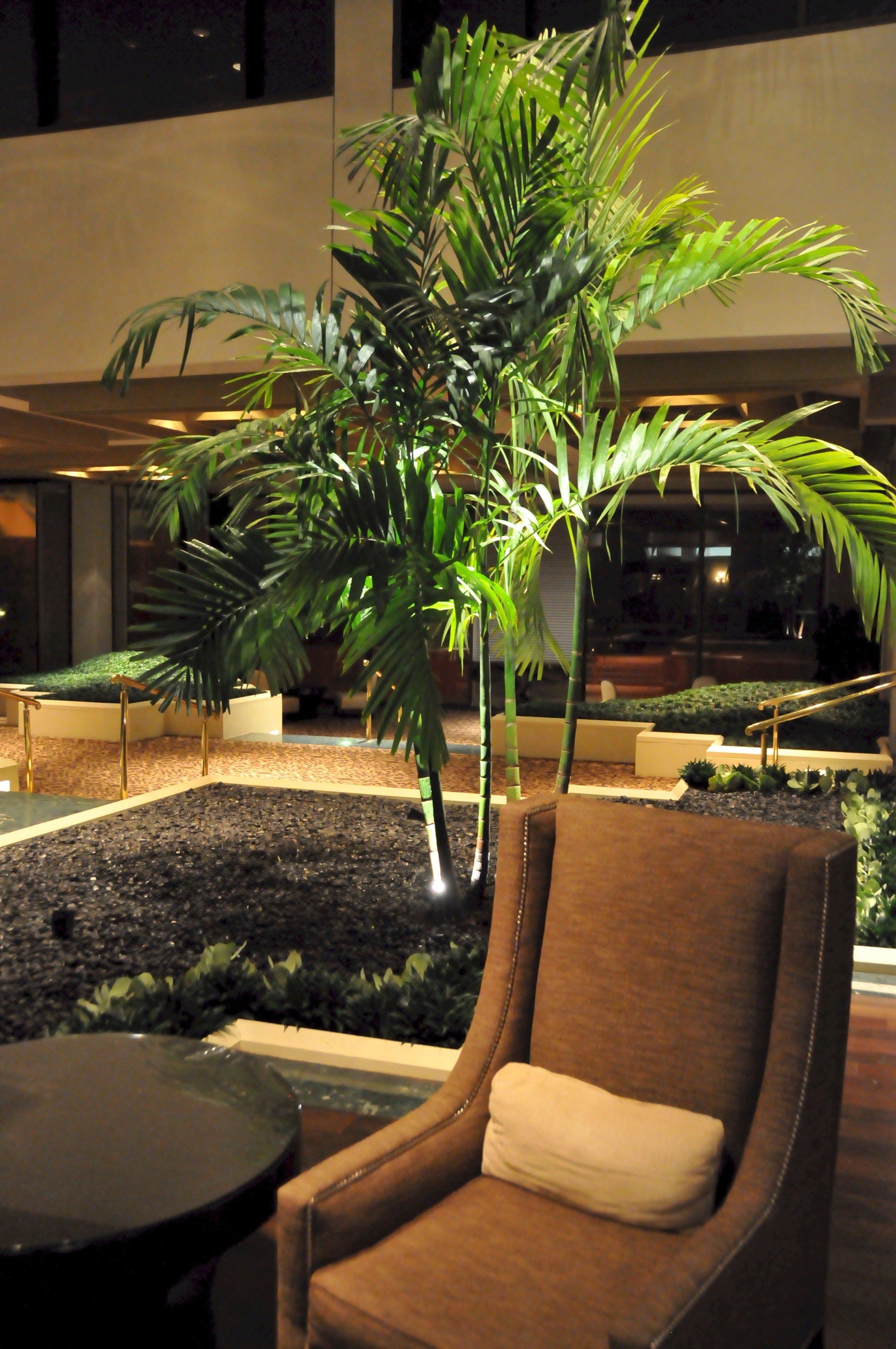 Omni Hotels Omni Houston Houston Texas Interiorscape